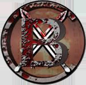 BitcoinX icon